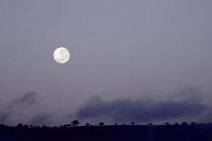 Casa Luna - Moonlight