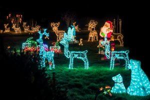 Christmas lights in Toowoomba